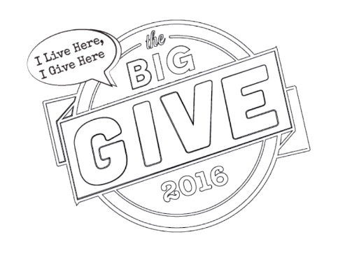 The Big Give 2016